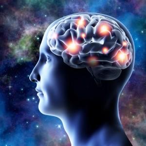Alzheimer cervello