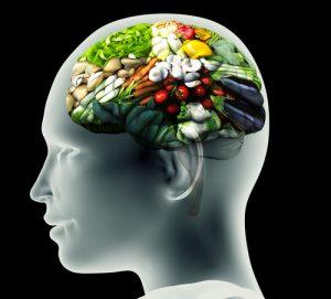 cibo cervello