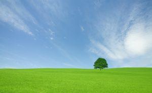 ambiente aria pulita